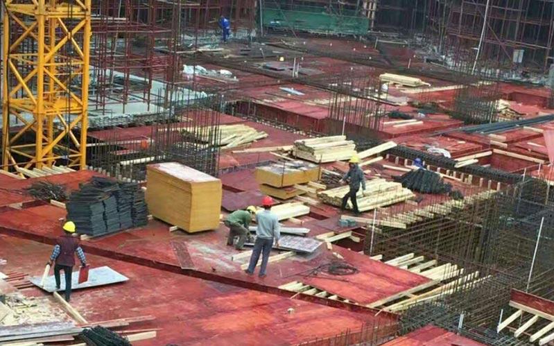 已发往工地的灰狼木业建筑模板