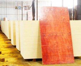 一级桉木整芯工程建筑模板