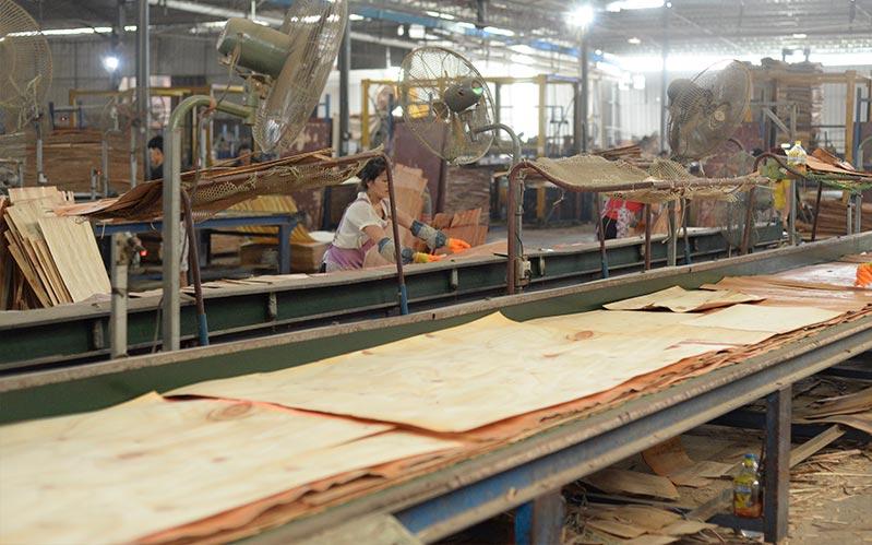 建筑模板生产-排板流水线车间