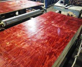 冬季施工首选灰狼建筑红面模板