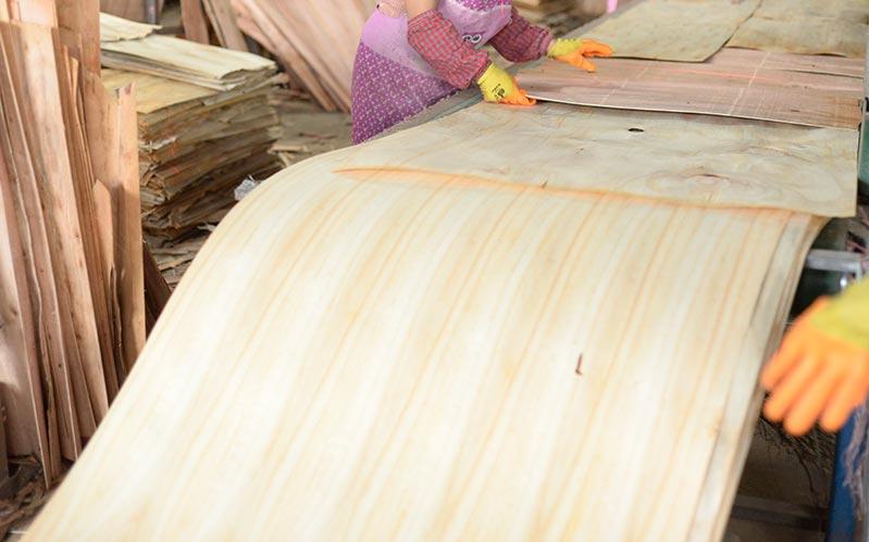 建筑模板产品生产使用一级单板
