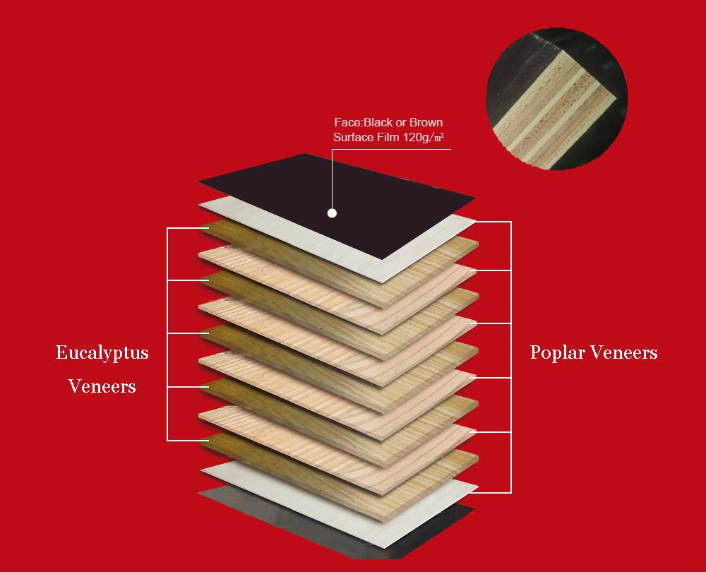 建筑覆膜板生产原理图解