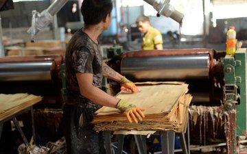 建筑木模板生产厂家-灰狼木业